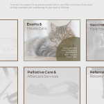 Park Avenue Veterinary Services Parent Page with Mouse Over